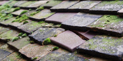 Birtsmorton roof repair costs